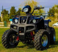 ! OFERTE SPECIALE DE PASTE ! Atv AKP Grizzly M10